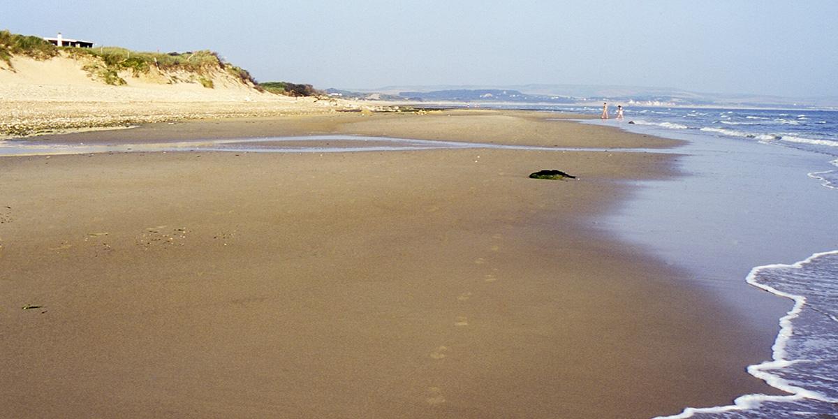 Apprenez les bons gestes pour préserver la plage